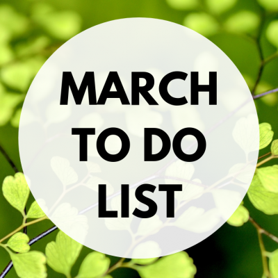 March To Do List